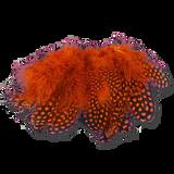 Select Guinea Body Feathers - Orange
