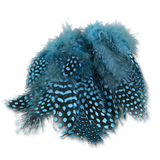 Select Guinea Body Feathers - Silver Doctor Blue