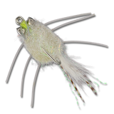 Casa Blanca Raghead Crab -  White (top view)