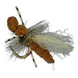 Hegan Ant - Cinnamon #14