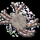 Alphonse Crab - Tan #2