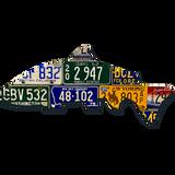 Pacific Northwest Steelhead License Plate Art
