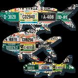 Belize Grand Slam License Plate Art