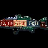 South Carolina Redfish License Plate Art
