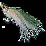Pole Dancer - Rainbow