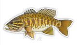 Casey Underwood Fish Decal - Smallmouth Bass