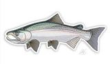 "Casey Underwood Fish Decal - Coho ""Silver"" Salmon"
