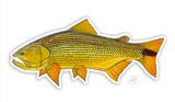 Casey Underwood Fish Decal - Golden Dorado