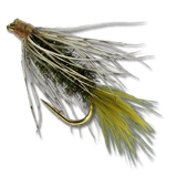 Norman's Wiggletail - Peacock