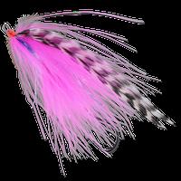 Burnt Chicken - Pink