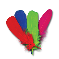 Goose Shoulder Feather
