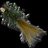 Pyramid Beach Leech - Peacock #8
