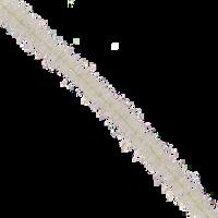 Tarantula Brushes - Tan