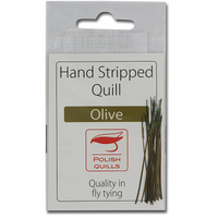 Stripped Peacock Quills - Olive