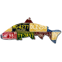 Michigan Steelhead License Plate Art