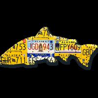 Alaska Steelhead License Plate Art