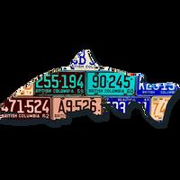 British Columbia Steelhead License Plate Art