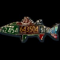 Massachusetts Antique Striped Bass License Plate Art