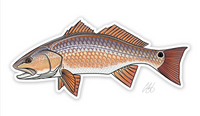 Casey Underwood Fish Decal - Redfish