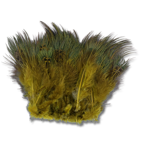 Strung Ringneck Pheasant Rump - Olive