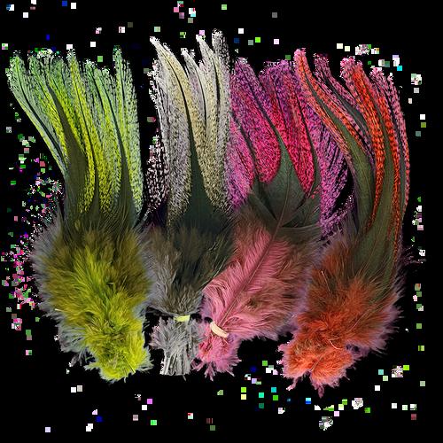 UV2 Coq De Leon Fire Tail Feathers