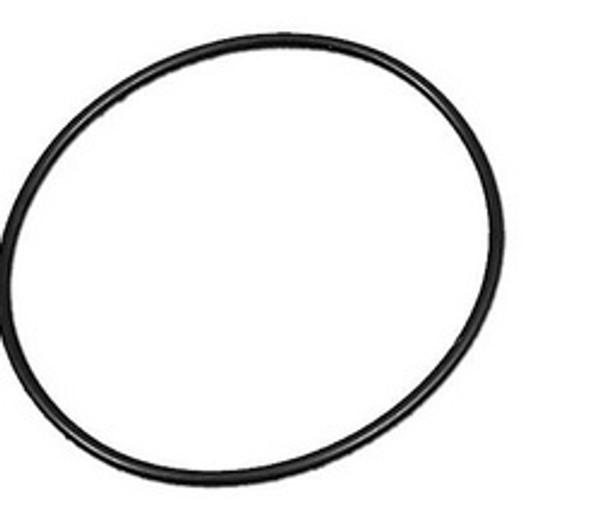 Waterway TruSeal O Ring Check Valve - 805-0239