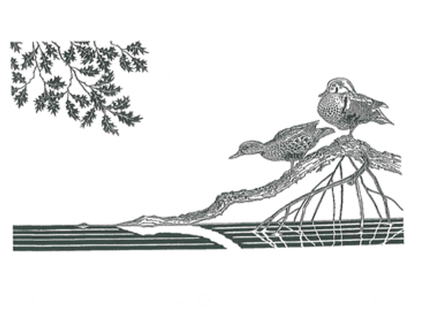 Glass, Wood Duck Etching - MF3565