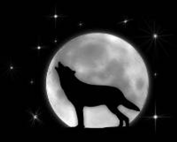 LASER WOLF 3