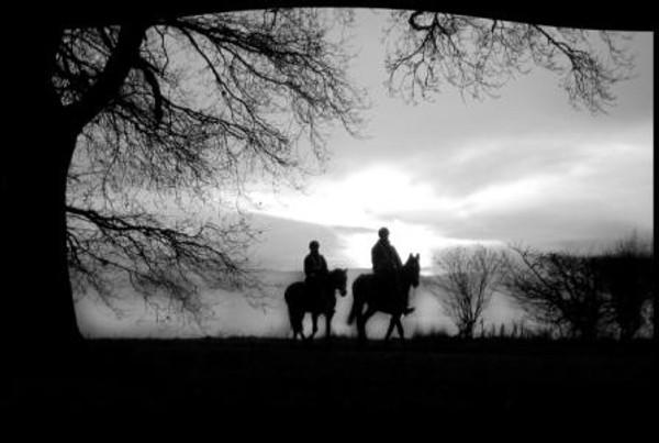 LASER COUPLE ON HORSEBACK