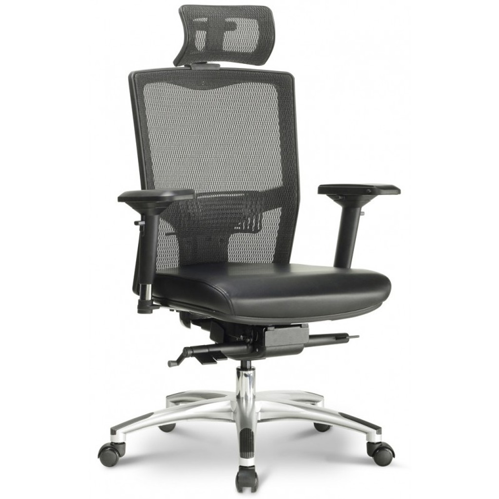 Argento Ergonomic Executive Task Chair