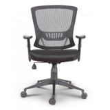 Stella Ergonomic Task Chair