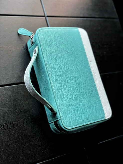 Project Carbon Sterling Mint Travel Case