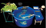 Complete mini fish farm system shown with optional aquaponics kit.