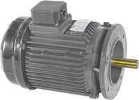 Paddle Wheel Aerator Replacement Motor 2HP