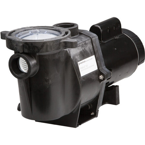 Standard style of the sparus pump showing the inlet and integrated filter basket, along with the motor.