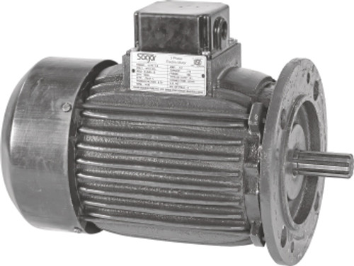 Paddle Wheel Aerator Replacement Motor 1HP