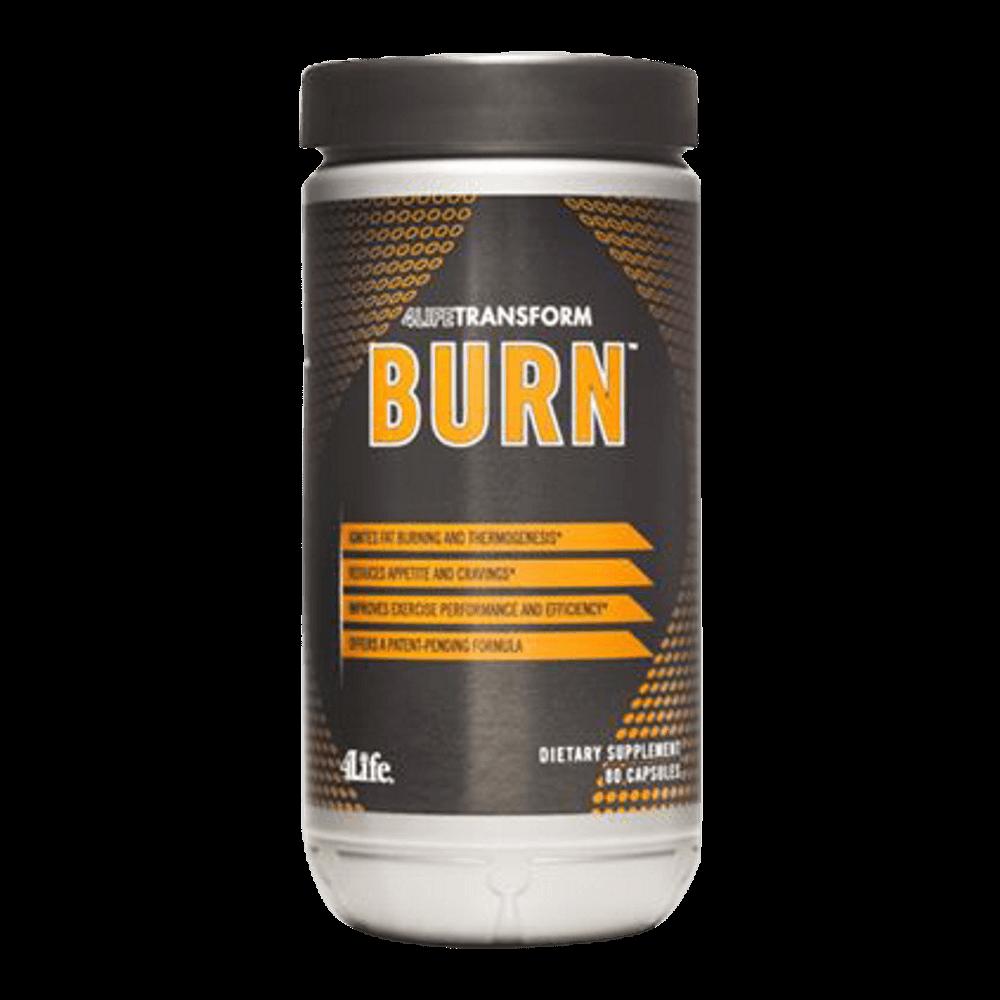 Transform Burnn