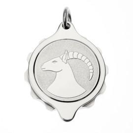 Stainless Steel SOS Talisman Pendant - Zodiac Capricorn