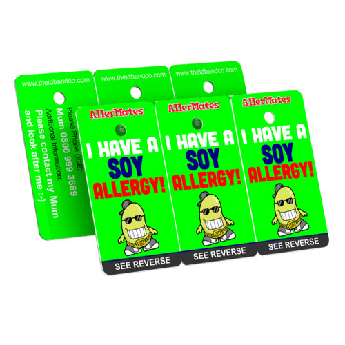 I Have A Soy Allergy Bag Tag / Key Fob