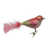Pastel Rose Bird