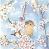 Spring Harmony Napkins