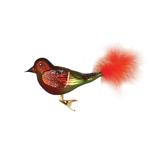Red and Green Bird