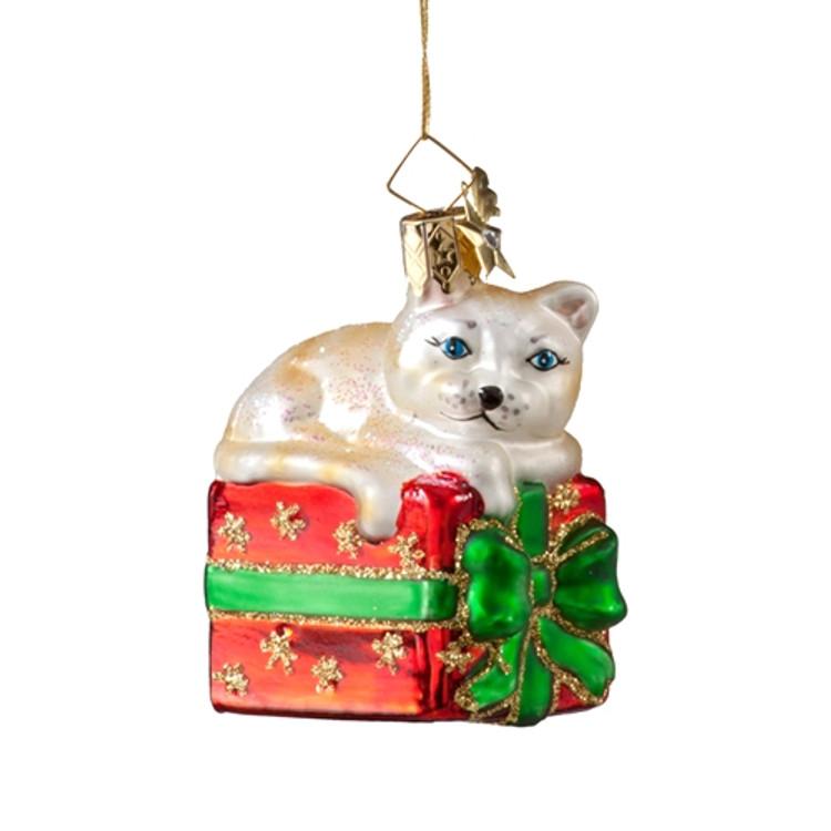 Cat on Gift Box