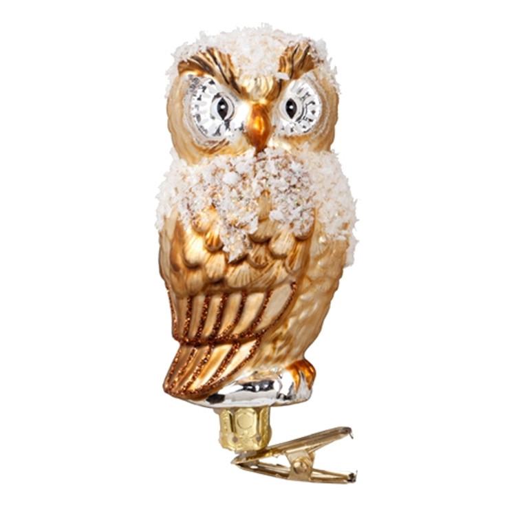 Snowy Owl Clip
