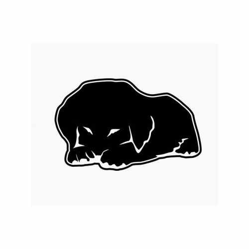 Golden Retriever Puppy Cute  Vinyl Decal Sticker  Size option will determine the size from the longest side Industry standard high performance calendared vinyl film Cut from Oracle 651 2.5 mil Outdoor durability is 7 years Glossy surface finish