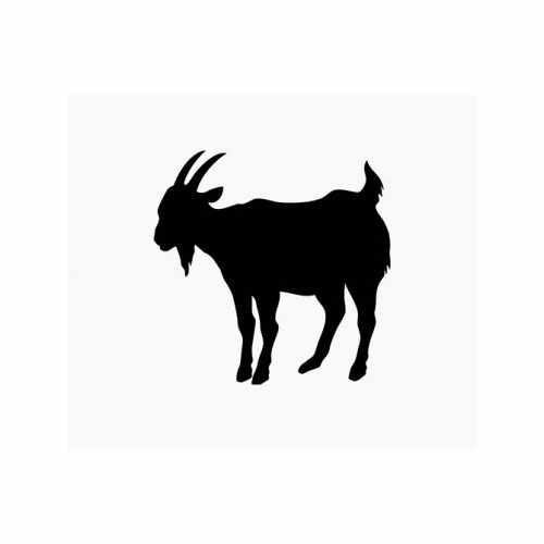 Goat  Vinyl Decal Sticker  Size option will determine the size from the longest side Industry standard high performance calendared vinyl film Cut from Oracle 651 2.5 mil Outdoor durability is 7 years Glossy surface finish