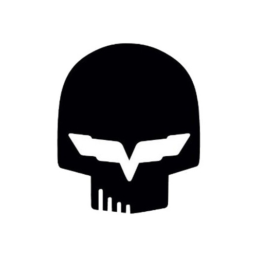 Corvette Skull  Vinyl Decal High glossy, premium 3 mill vinyl, with a life span of 5 - 7 years!