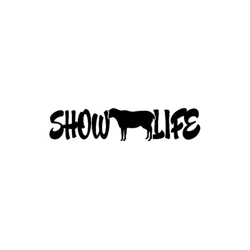 Show Life   - Sheep    Sheep Lamb  Vinyl Decal High glossy, premium 3 mill vinyl, with a life span of 5 - 7 years!