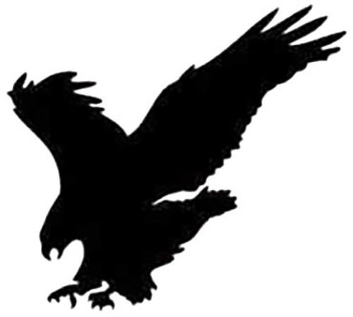 Eagle Hawk