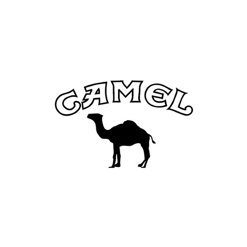 CAMEL ver3 Aftermarket Decal High glossy, premium 3 mill vinyl, with a life span of 5 - 7 years!